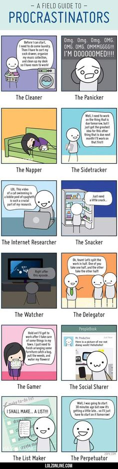 A Field Guide To Procrastinators #lol #haha #funny I am currently doing like half of those