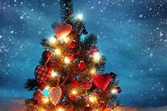 """""""Natal é tempo... de dar um toque na vida com as cores da esperança, da fé, da paz e do amor. Também é tempo de preparar, em nosso coração e em nosso lar, um espaço para acolher as sublimes lições da Sagrada Família de Nazaré e aceitar as inevitáveis surpresas da vida.  Natal é tempo... de olhar para o céu, encantarmo-nos com a luz das estrelas e seguir a estrela-guia. É tempo abençoado de dar mais atenção à criança que mora em cada um de nós e às que encontramos em nosso peregrinar, à ..."""