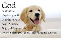 god couldnt be physically with us so dogs - Google Search