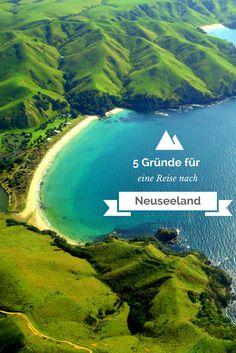 Rund 24 Stunden zählt der Flug nach Neuseeland, über 18000 Flugkilometer werden dabei von Frankfurt nach Auckland zurückgelegt, und doch nehmen zahlreiche Reisebegeisterte immer wieder die lange Anreise in Kauf, um das entfernte Land der Maori, Kiwis und Hobbits zu besuchen. Wieso? Wir haben hier 5 gute Gründe für eine Reise nach Neuseeland, ans andere Ende der Welt.