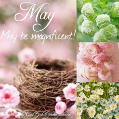 goed gestrikt Welcome May, Welcome Spring, Seasons Of The Year, Months In A Year, 12 Months, Collages, Neuer Monat, Spring Images, Rose Cottage