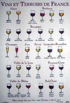 vins et terroirs de France