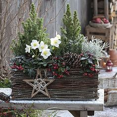 26 Christmas Garden And Patio Decoration Ideas Christmas Garden, Christmas Flowers, Outdoor Christmas, Country Christmas, Winter Garden, Winter Christmas, Christmas Wreaths, Christmas Crafts, Magical Christmas