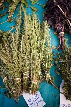 "Rosemary - Antioxidant - ""Rich in rosmarinic acid, a powerful antioxidant, rosemary leaves have been shown to increase blood flow to the brain, giving credence to the herb's reputation as a memory tonic. The herb contains anti-inflammatory and immune-boosting compounds and is a good source of iron, calcium, and potassium."""