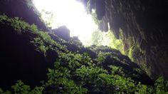 Cuevas Rio Camuy