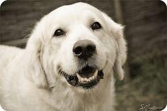 Happy Blanco
