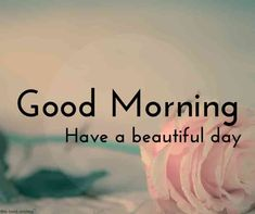 Looking for Beautiful Good Morning Images? Check out our collection of Beautiful HD Images, Photos, Pics, Wishes and Greetings to send on Whatsapp for Free. Morning Jokes, Morning Quotes For Friends, Morning Quotes Images, Good Morning Images Hd, Night Quotes, Good Morning Couple, Good Morning Winter, Good Morning Roses, Good Morning Picture