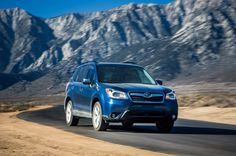 Subaru Forester is the 2014 SUV of the Year - Do You Agree With Our Choice? - Motor Trend WOT