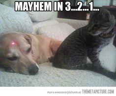 Mayhem in 3-2-1