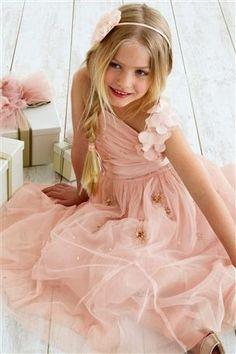 Pink Occasion Dress (3-14yrs) from the Next UK online shop, would make  beautiful blush flower girl dress