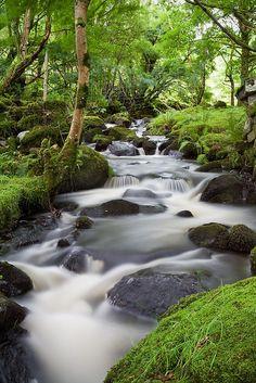 Arthog <b>Waterfalls</b>