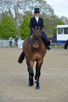 Alan Ross Ladies Hunter - Royal Windsor Horse Show 2013. Danielle Heath riding Oathill Take The Biscuit.