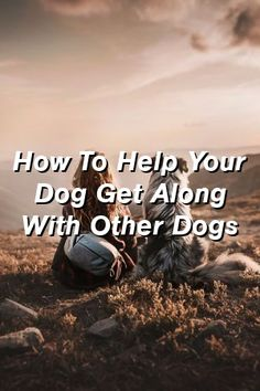 Baby Overalls Speak: How To Help Your Dog Get Along With Other Dogs Best Dog Breeds, Best Dogs, Most Expensive Dog, What Kind Of Dog, Baby Overalls, Free Dogs, Dog Eating, Old Dogs, Dog Training Tips