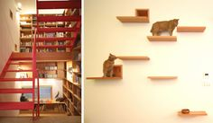 Cat-friendly Tokyo Residence Designed by Key Operation...love all the bookcases in home:) AND CAT ACCOMODATIONS!