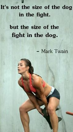 It's not the size of the dog in the fight, but the size of the fight in the dog.