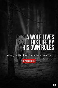 wolves LIVE BY THERE OWN RULES