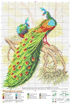 craft home decor: peacocks embroidered pictures beautiful cross stitch ideas for home Cross Stitch Bird, Beaded Cross Stitch, Cross Stitch Animals, Counted Cross Stitch Patterns, Cross Stitch Charts, Cross Stitch Designs, Cross Stitching, Cross Stitch Embroidery, Embroidery Patterns Free