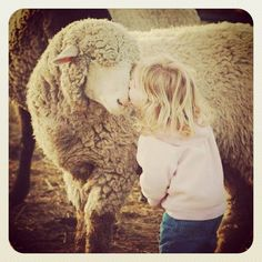 Agathe et Violette le mouton vous souhaitent un bon dimanche ! Agatha and her sheep, Violette wishes you a happy sunday ! #unjourjeserai #agathe #somedayillbe #ferme #animals #violette #dimanche #sunday