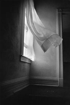 by Harold Feinstein