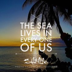 The sea lives in every one of us.