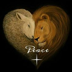 "The lion and the lamb painting in the shape of a heart, with the word ""Peace"", precious. Please also visit www.JustForYouPropheticArt.com for more colorful Prophetic Art. Thank you so much! Blessings!"
