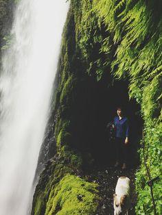 Tunnel Falls hike, Columbia River Gorge, OR Oregon Vacation, Oregon Road Trip, Oregon Trail, Oregon Coast, Vacation Spots, Oregon Hiking, Oregon Usa, Hiking Trails, Oregon Lakes