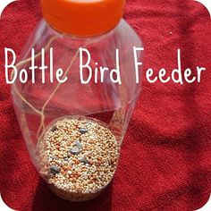Bottle Bird Feeder, there is no tutorial but use your imagination it's easy to make with the kiddo's for a summer project. adults can seal the sharp edges with heat so as not to cut the birds as they perch to feed.