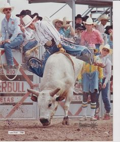 Lane Frost 1986 champ George Paul Memorial ~ I have a tribute board on my acct to him . Rodeo Cowboys, Real Cowboys, July In Cheyenne, Cute Country Boys, Country Life, Lane Frost, Bucking Bulls, Rodeo Events, Professional Bull Riders
