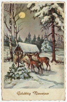 Postcards - Greetings & Congrads #  564 - Happy New Year - Winter Scene with Deers