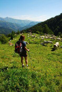 Monte #Saccarello , entroterra imperiese, Liguria - © Enrico Bottino