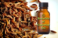Caraway oil is one of the most popular essential oils, being appreciated for unique medicinal properties. Also used for exotic cuisine, the distinct scent