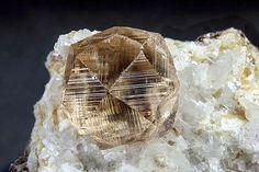 Grossular - Jeffrey Mine, Asbestos, Les Sources RCM, Estrie, Québec, Canada Size: 3.98 mm