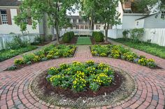 Garden on the East side of the Raleigh Tavern with The King's Arms Tavern in the background. Summer at Colonial Williamsburg.