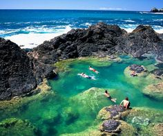 Tide pools and snorkel them in Fiji!!
