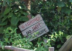 Disney World Hidden Secret: Pull The Rope! At Disney's Hollywood Studios | Disney World Blog Discussing Parks, Resorts, Discounts and Dining | Only WDWorld
