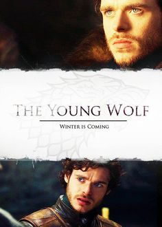 Rob Stark, The Young Wolf & The King in the north......my favorite ugh so handsome I love beards