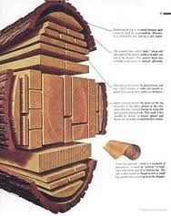 「lumber cuts」的圖片搜尋結果