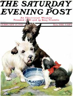 February 27,1926--Cat Guards Bowl of Milk - waring the westie and scottie