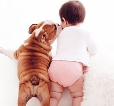The major breeds of bulldogs are English bulldog, American bulldog, and French bulldog. The bulldog has a broad shoulder which matches with the head. So Cute Baby, Cute Kids, Adorable Babies, Dogs And Kids, I Love Dogs, Puppy Love, Baby Pictures, Cute Pictures, Cute Puppies