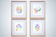 Watercolor Anatomy Art Print Set that includes heart anatomy, brain anatomy, skull anatomy, and rib cage anatomy. Perfect for medical office décor and