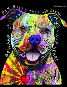 Beware of Pitbulls, they'll steal your #heart ♥