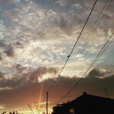 #sunset #clouds #sky #bird #lonely #alone