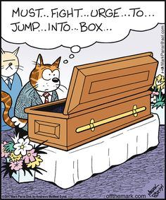 29 ideas cats humor cartoon comic for 2019 Cat Jokes, Funny Cat Memes, Funny Art, Funny Cartoons, Funny Comics, Cats Humor, Hilarious, Funny Animal Pictures, Funny Animals
