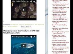 """26.09.17 - Blog """"La Caracola"""" - Diario de Información del Mar - Aprocean"""