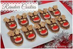 reindeer biscuites