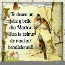 Bendiciones Para Ti - Gif - New Multimedia Multimedia, Bellisima, Faith, Baseball Cards, Happy Tuesday, God Bless You, Trapper Keeper, Pictures, Loyalty