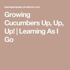 Growing Cucumbers Up, Up, Up!  | Learning As I Go