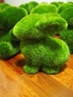 Rabbit design! Dimensions: 12 cm wide, 14 cm tall #hilivre #moss #pet #animal #bear #rabbit #squirrel #creative