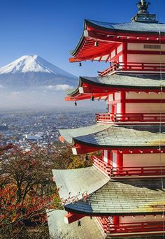 Japan: The Land of the Rising Sun and Shrinking Population