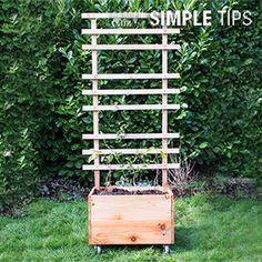 Grow Up: DIY Trellis Planter Box   Garden Club